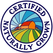 CNG color logo