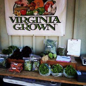 farmstand 2013-12