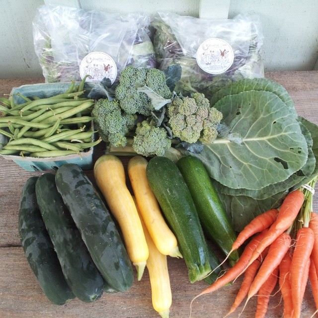 farm share week 7