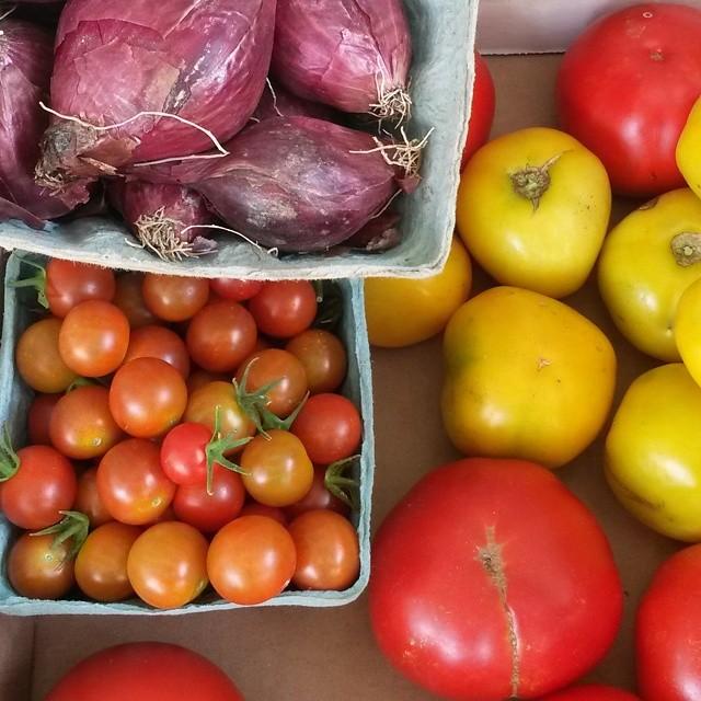 salsa tomato onion farm stand