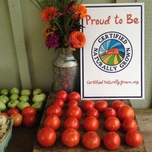 farm stand 2014-08-13