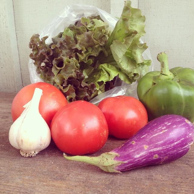 tomato pepper lettuce garlic farm stand