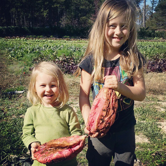 girls giant sweet potatoes