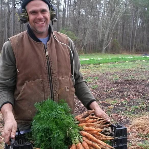 dan carrots