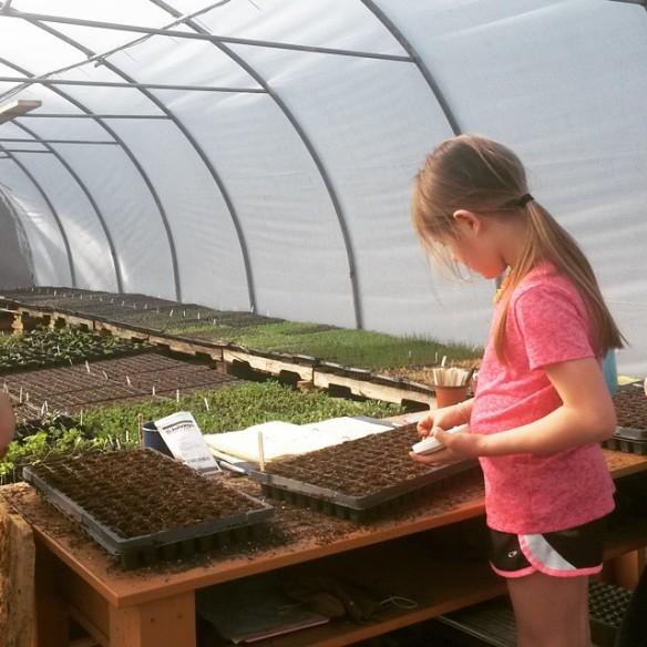 Sylvie greenhouse