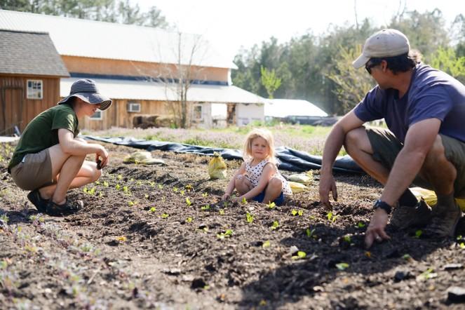 planting rachel dan elletta