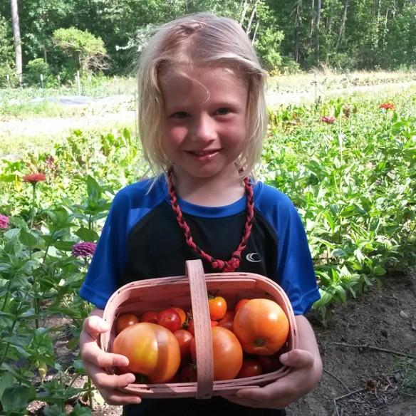 joren tomatoes