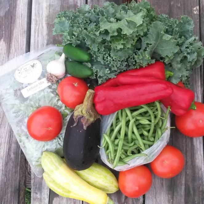 farm share 2015-08-05