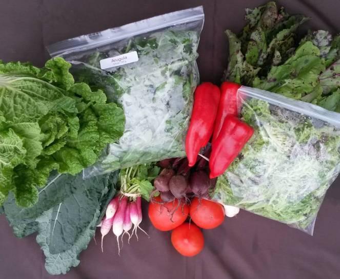 farm share 2015-09-30