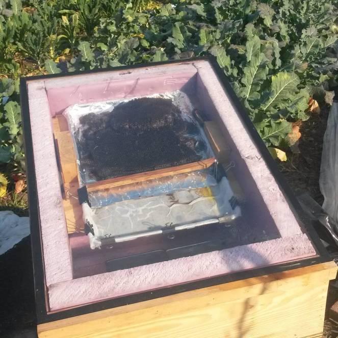solar wax melter