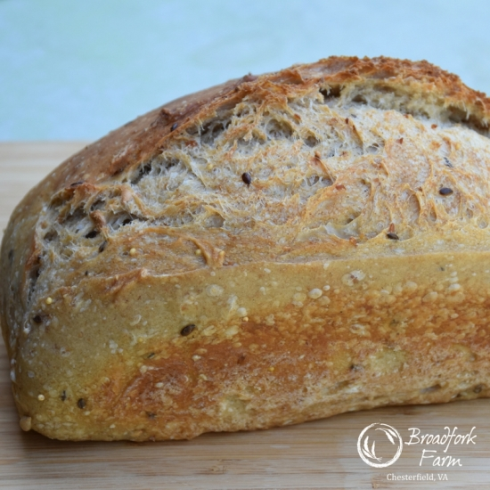 square bread seed