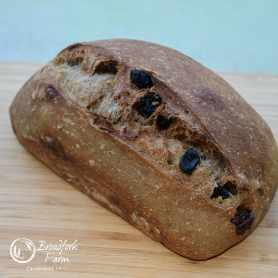 square rasin bread