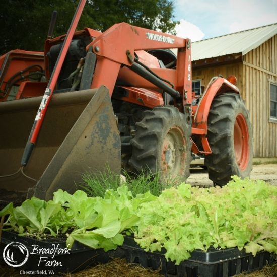 square tractor trays