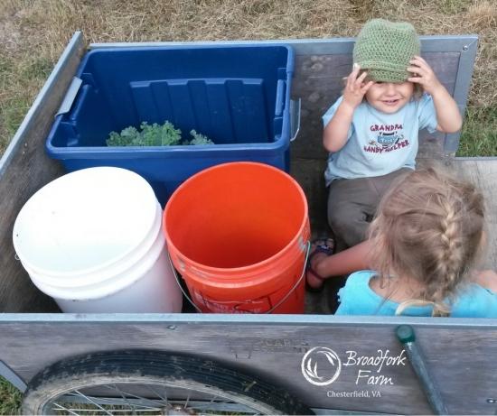 web-farm-kids